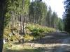 IMG_0983.Jsme_v_lese_a_pekny_kus_cesty_za_nami-vpravo_dole.JPG